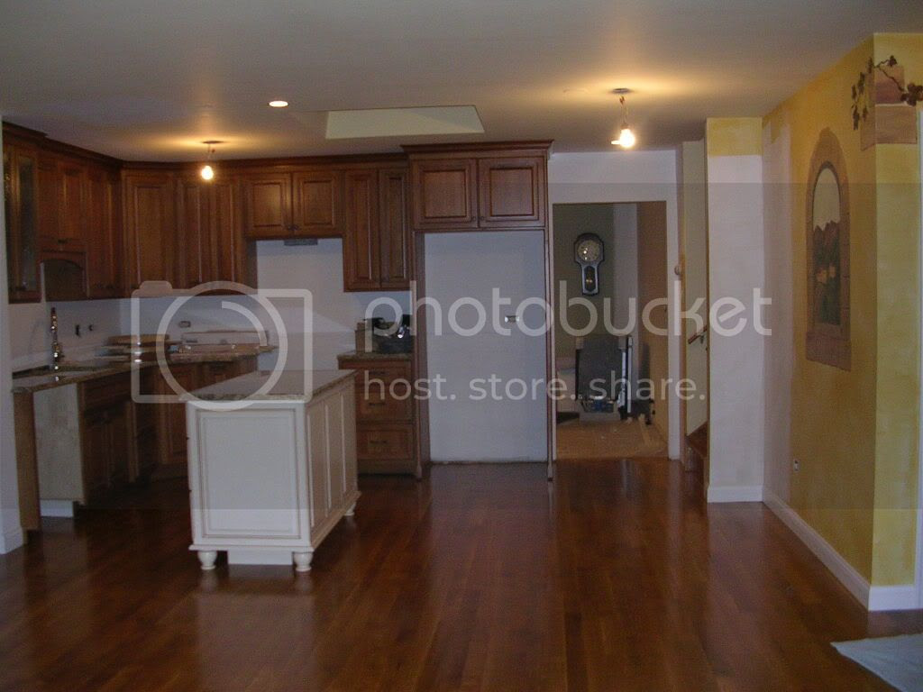 Kitchen Cabinets with Dark Wood Floors