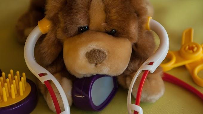 Enfermedades del corazón en perros: síntomas y soluciones