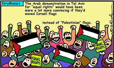 Dry Bones cartoon, Amazon,equal rights, demonstration, national law, Israel, Israeli Arabs,Palestine, Tel Aviv, flags,