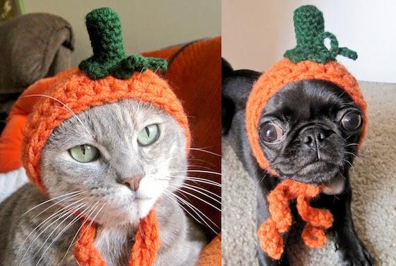 pet costume CAT COSTUME HALLOWEEN pumpkin dog pet hat for cat dog x-small small medium puppy hood hoodie adjustable crocheted