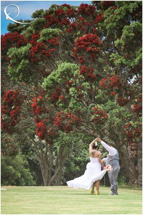 New Zealand Wedding   under the Pohutukawa trees in Paihia