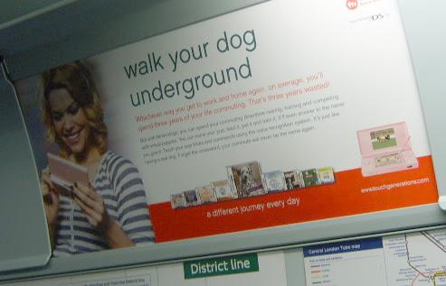 Nintendo Dog Walking