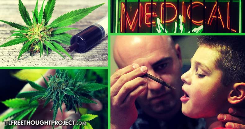 Image result for Jaw Dropping Study Shows Cannabis Helps a Whopping 90% of Epileptics Who Try It