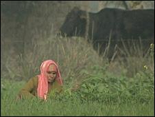 Ballabgarh Northern India