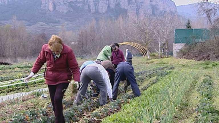 Mujeres rurales que concilian la vida laboral con la profesional