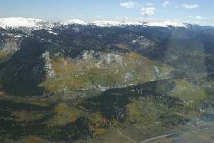 Aerial view of aspens and snow