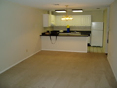 lving room/kitchen