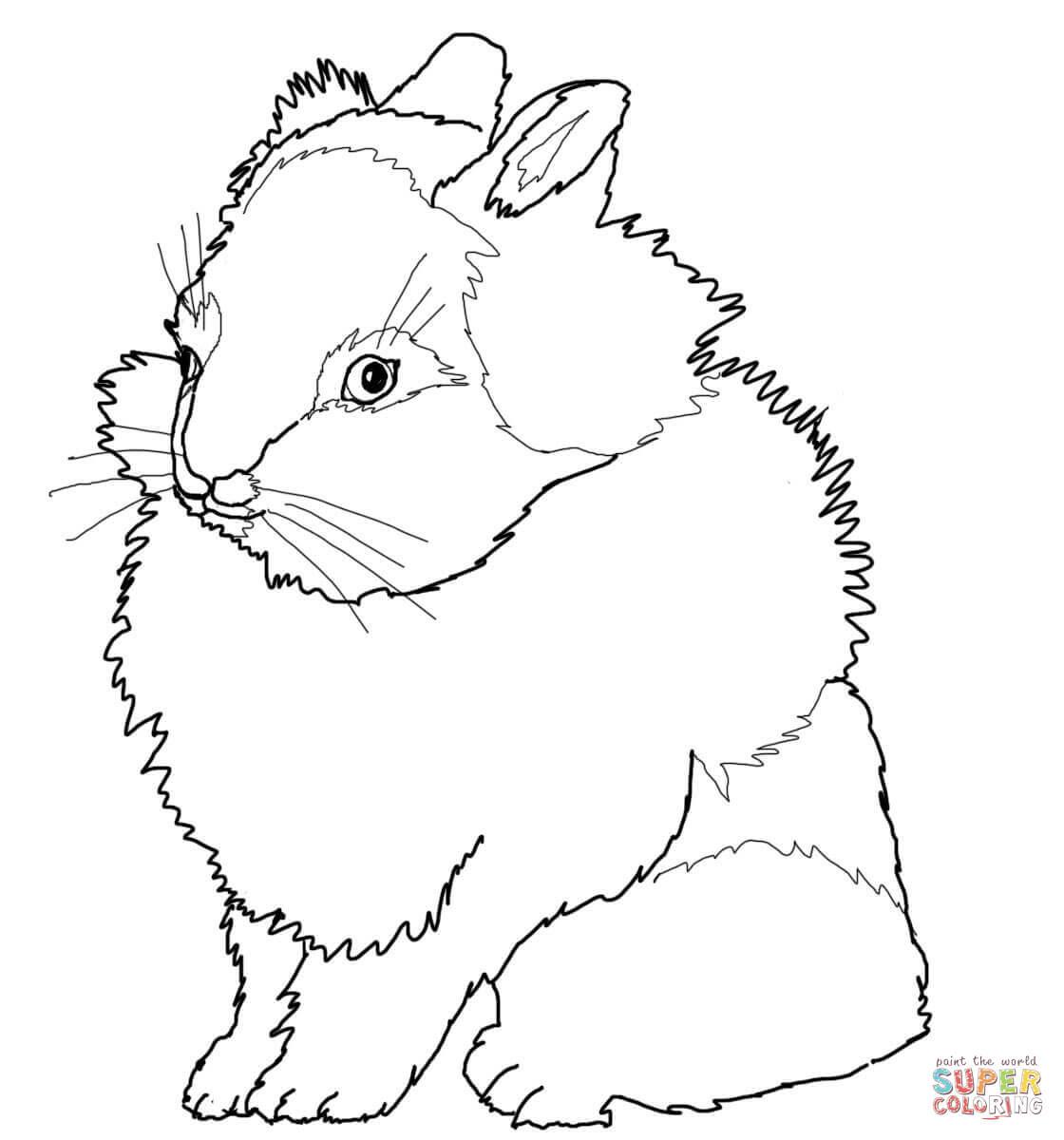 Dibujos De Conejos Para Colorear Páginas Para Imprimir Y Colorear