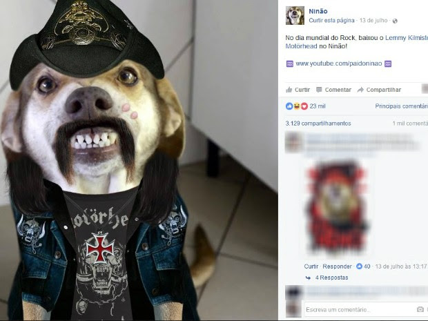 O vira-lata fantasiado de Lemmy Kilmister, líder da banda Motörhead (Foto: Reprodução/Facebook)