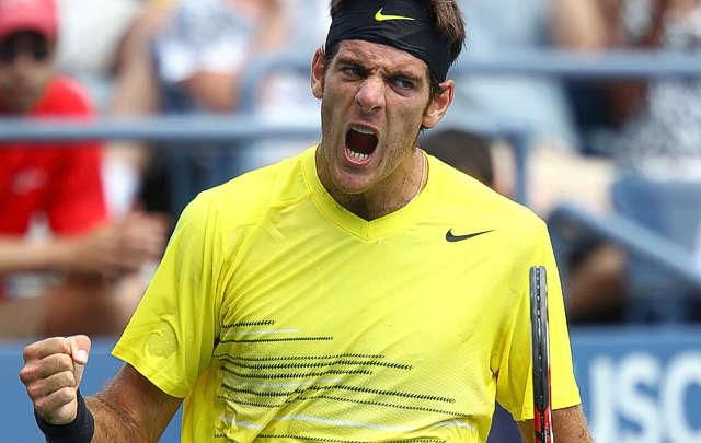 Tenis | Del Potro perdió la final en Viena contra el francés Jo Wilfried Tsonga