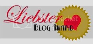 Liebster blog award 2014 winter