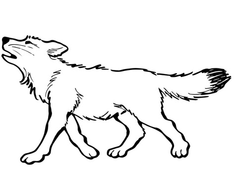 Baby Wolf Coloring page | SuperColoring.com