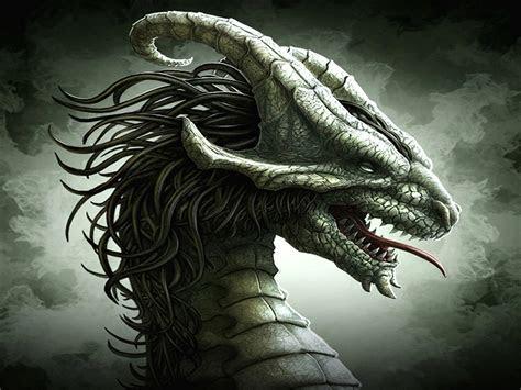 dragon wallpapers weneedfun