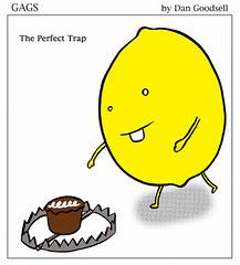 The Perfect Trap