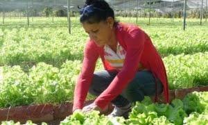 Estoy muy contenta por la respuesta rápida y eficaz que dieron los trabajadores, dice Iraelia.