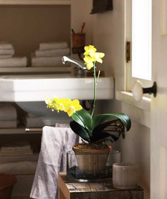 Colorful Bathroom Decorating with Flowers Adds Luxury to ...