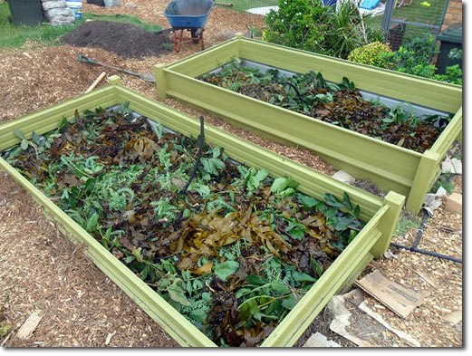 LOW COST RAISED BEDS - What's New