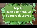Top 10 Health Benefits Of Fenugreek. Most Amazing Benefits Of Fenugreek