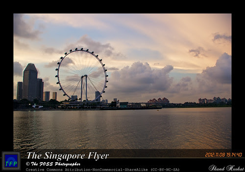The Singapore Flyer by Skand Hurkat