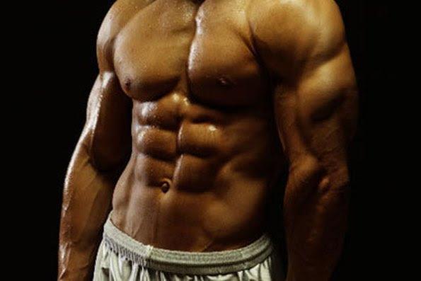 average body fat percentage bodybuilding