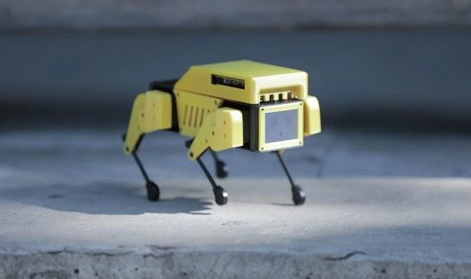 Робот-щенок Mini Pupper: очаровательная бюджетная версия Spot от Boston Dynamics