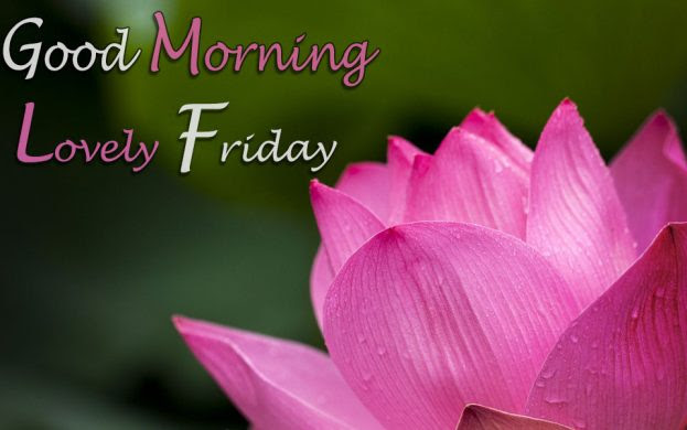 Good Morning Lovely Friday Good Morning Images Quotes Wishes