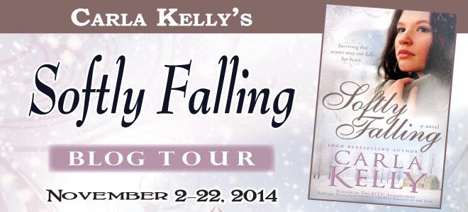 Softly Falling blog tour