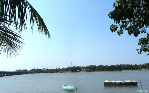 Odiyur Lake back water