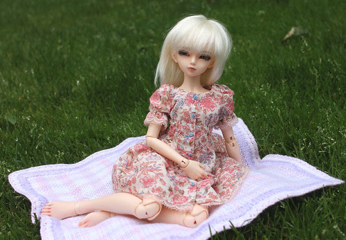 picnic?