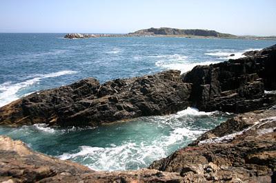 Mutton Bird Island
