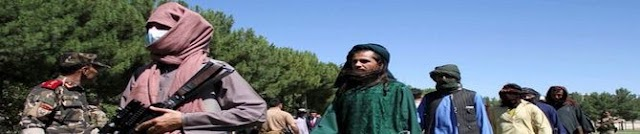 Emergence of Taliban In PoK Disturbing, Says Pashtun Leader