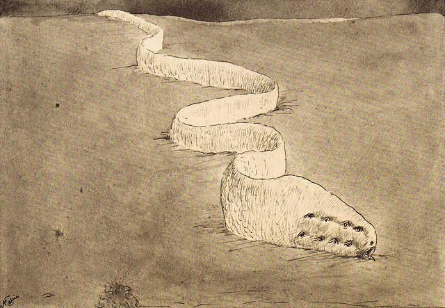 Alfred Kubin - Argwohn