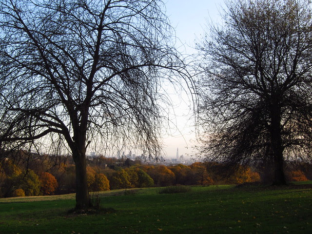 The View from the Stable Field at Kenwood
