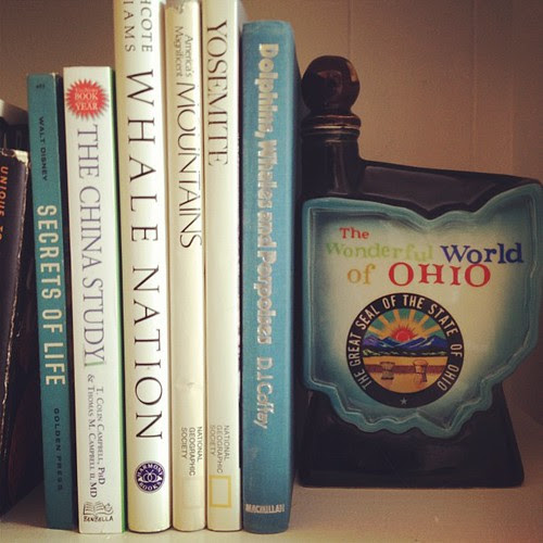 Day65 Some of my favorite books on my bookcase. 3.6.13 #jessie365