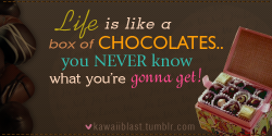 """Life is like a box of chocolates.. you never know what you're gonna get!"" - Tom Hanks"