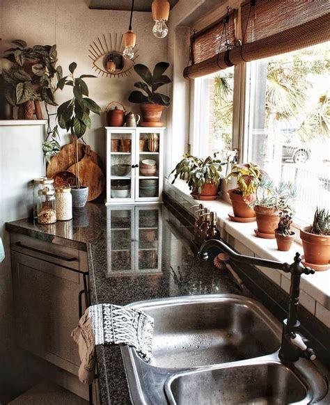 plants spark joy  instagram