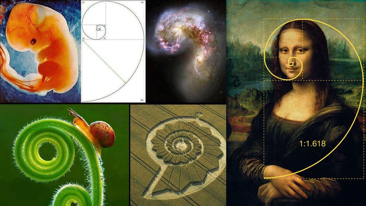 ¿Evidencia de un diseño divino o extraterrestre? Un misterioso número presente en toda la creación