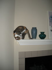 Grace on the Mantle