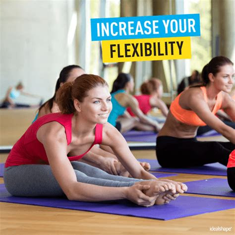 exercises  increase flexibility