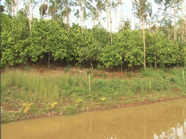 Agricultores conseguem produzir cacau, pimenta e até milho, mas reclamam da dificuldade para escoar a produção (Foto: Reprodução / TV Liberal)