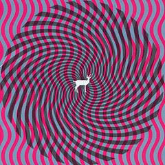 Deerhunter- Cryptograms