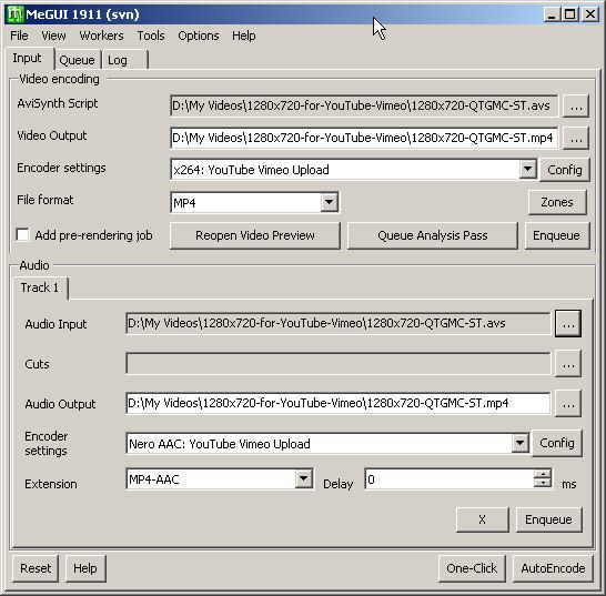MeGUI input tab