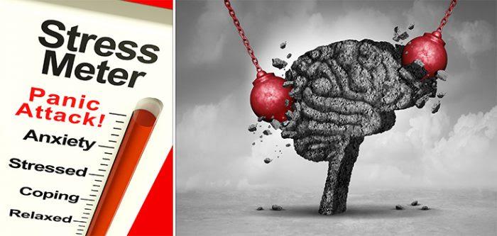 El estrés podría literalmente estar encogiendo su cerebro, según un estudio