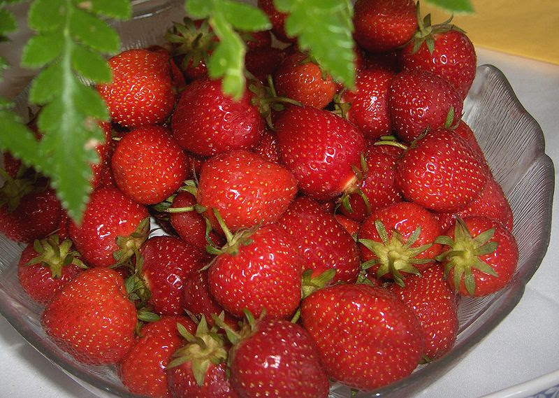 File:Garden Strawberries in Germany - edited.jpg
