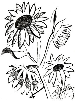Sunflower Black And White Free Sunflower Clipart Black And White