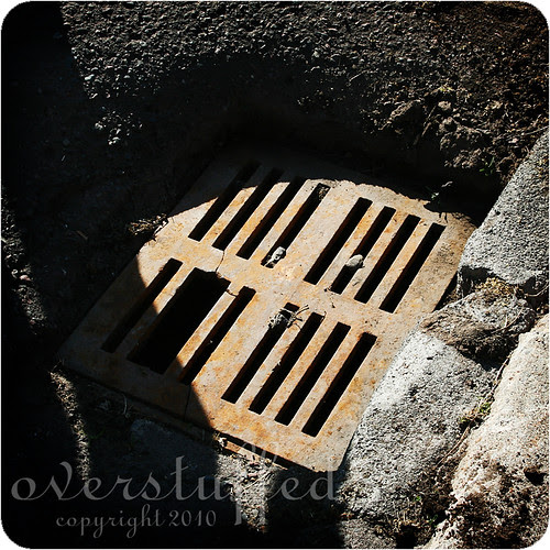 The Storm Drain