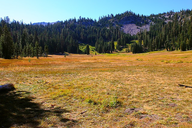 IMG_5061 Paradise Meadow, Lassen Volcanic National Park