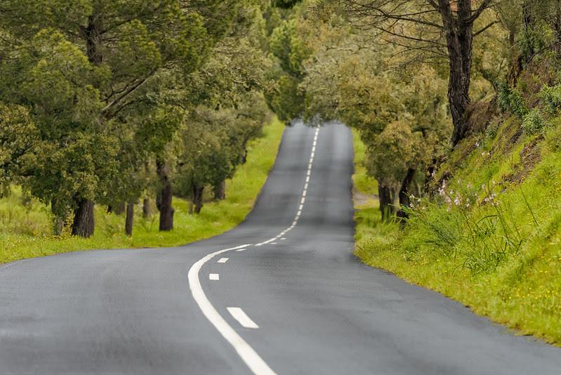 Winding roads of Alentejo