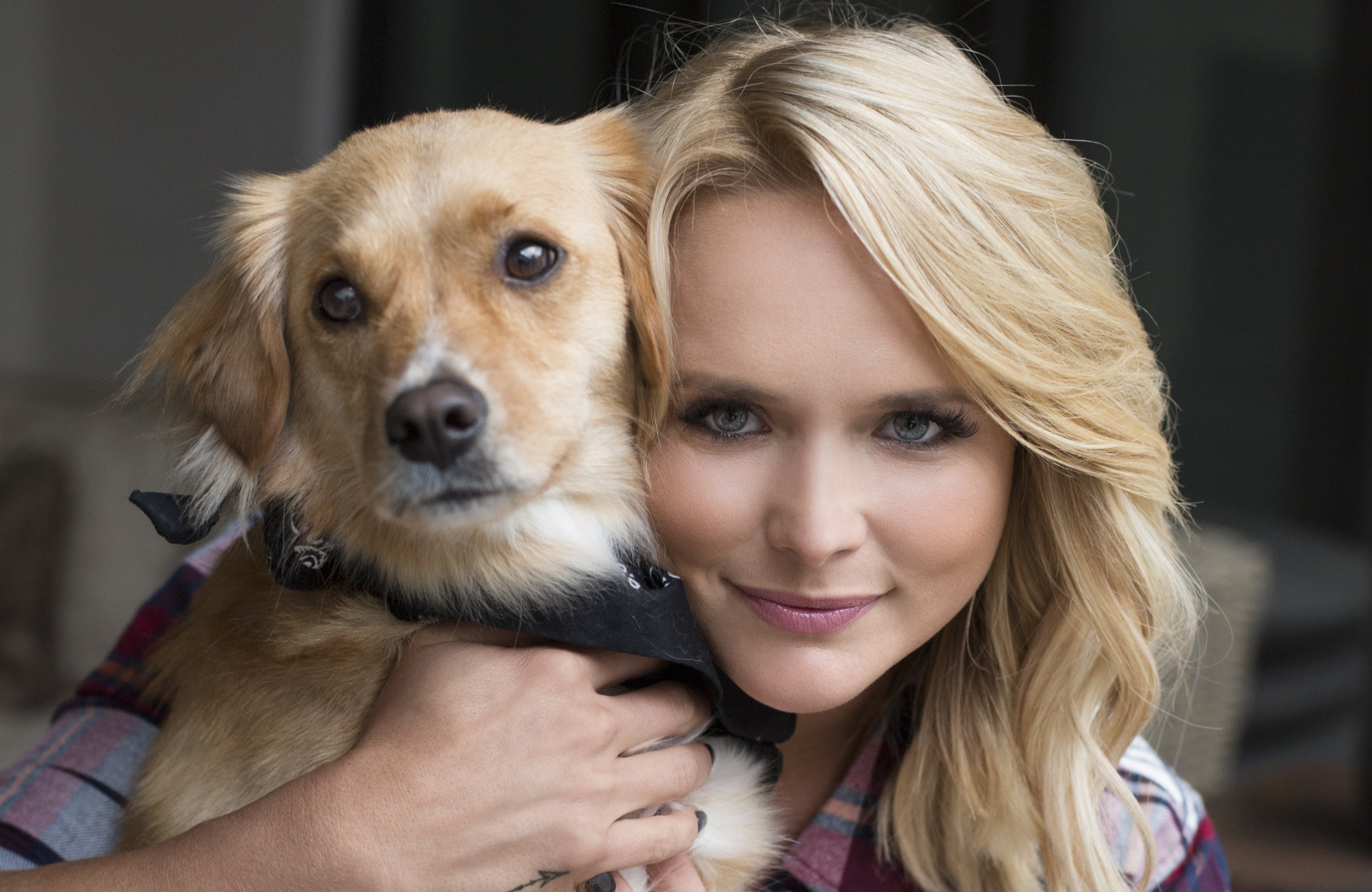 Image result for miranda lambert mutt