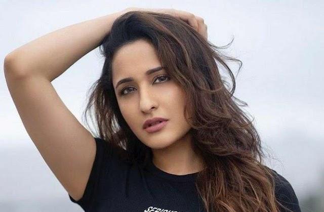 साउथ की यह अभिनेत्री फ़िल्म अंतिम में आएगी सलमान खान के साथ नजर....